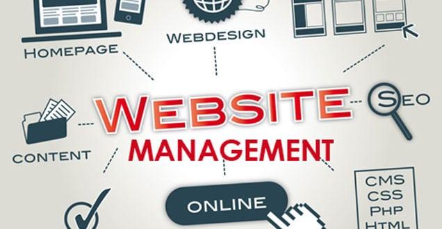 Le professioni del web - Lavori del futuro!